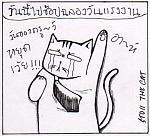 การ์ตูนแมวสถ่อย-1.jpg