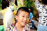 สวนสัตว์เปิดเขาเขียวน่าพาเด็กไปค.jpg